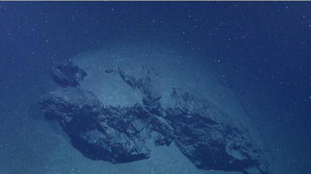 Глубоководный снег: Пир из трупов и причина гигантских существ бездны