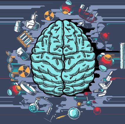 Мифы об IQ