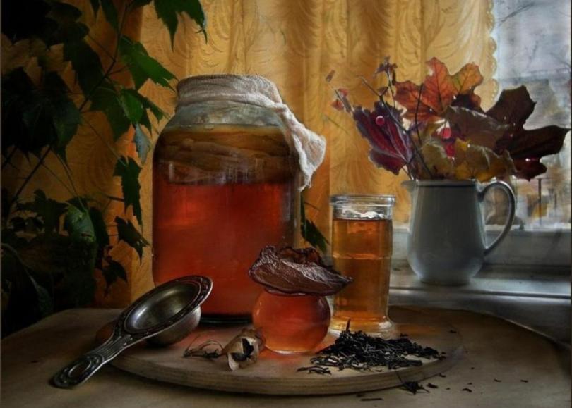 Чайный гриб как одна большая мистификация