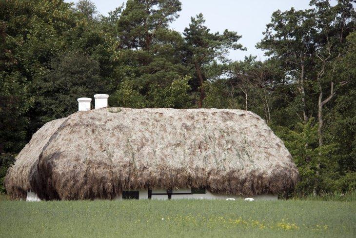 Удивительные дома с крышами из морских водорослей (4)