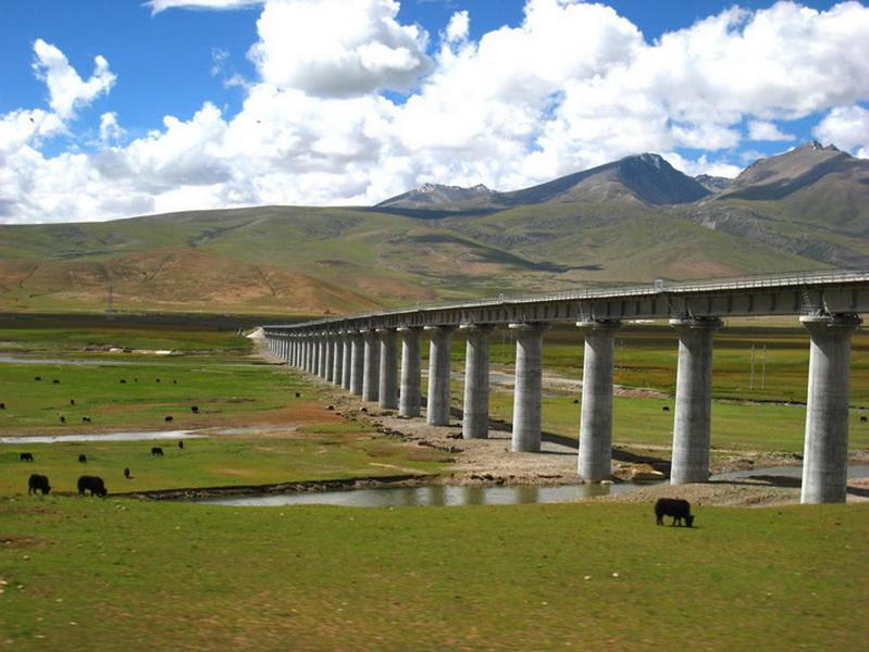 Скептики же считают Цинхай-Тибетскую железную дорогу лишь очередным этапом постепенной китайской колонизации своеобразного автономного региона и локомотивом освоения его природных ресурсов. Геологи уже обнаружили в высокогорных районах Тибета месторождения меди, свинца и цинка, сырья, крайне необходимого бурно растущей китайской промышленности.