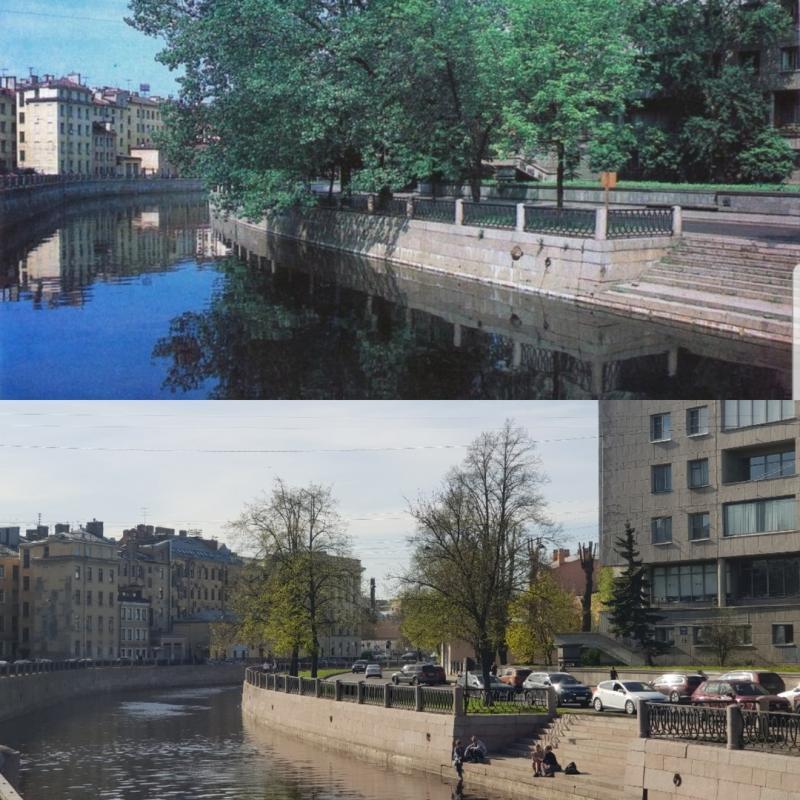 Город-сад: как в Петербурге за 300 лет исчезли деревья