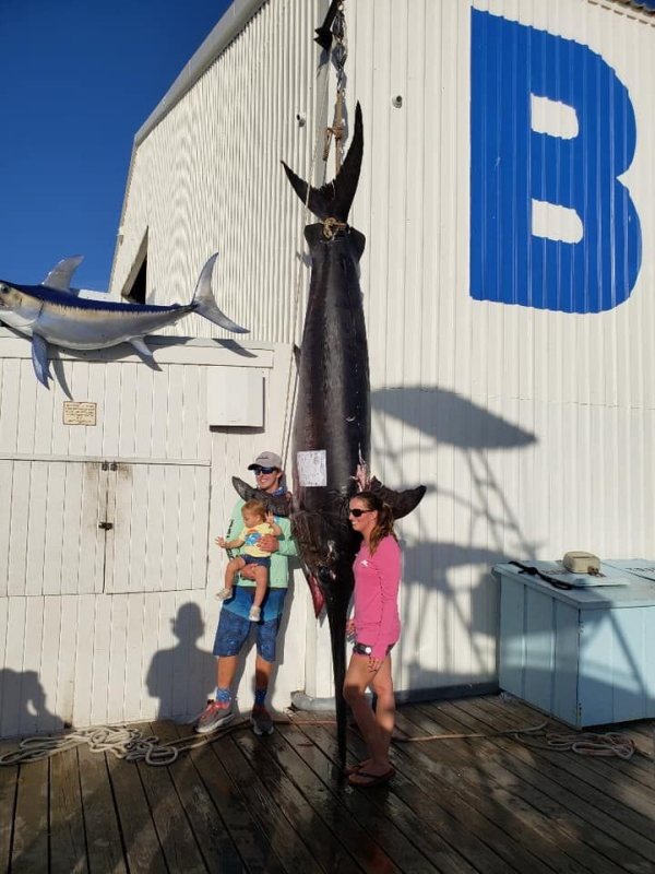 Барбекю из огромной меч-рыбы с весом в 343 килограмма (13 фото)