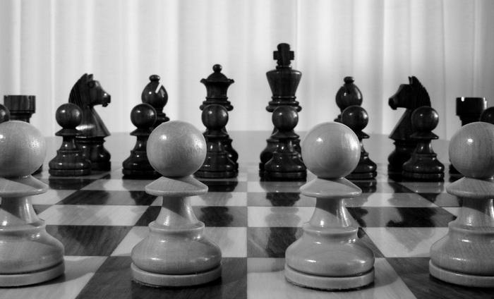 Вероятность того, что при правильном подходе к обучению ребенок станет гением  в выбранном для него деле, по Ласло Полгару, почти стопроцентная. Для сестер выбрали шахматы.