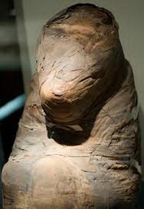 Одна из мумий бабуина - животного, привезенного в Египет из страны Пунт