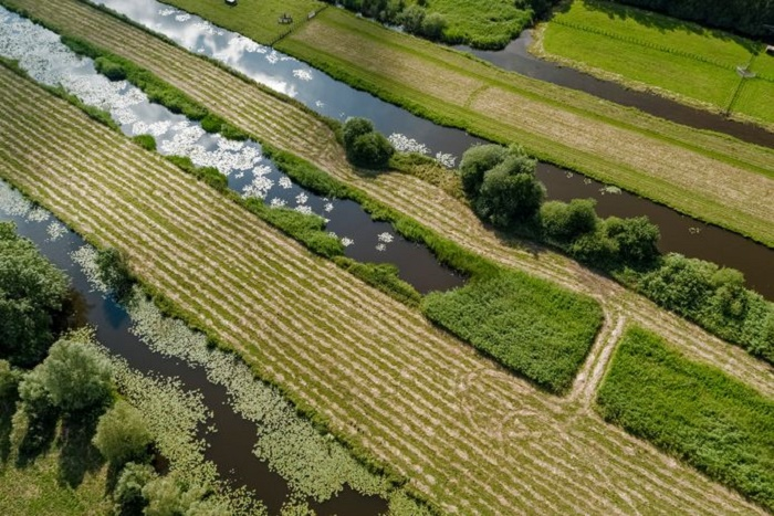 Узкие полоски островков используются в качестве сельхозугодий (Vinkeveense Plassen, Нидерланды). | Фото: makelaardij-witte.nl.