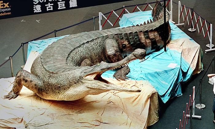 Это вымерший род рептилий, крупнейший среди всех крокодилов / Фото: 4.bp.blogspot.com