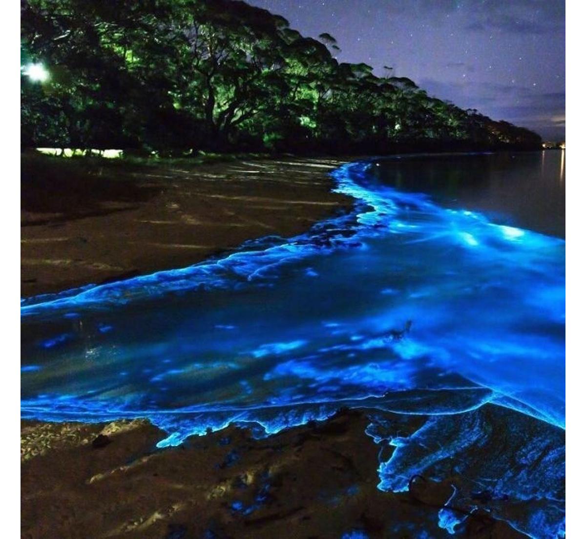 Остров Ваадху и светящиеся пляжи Мальдив Мальдивы