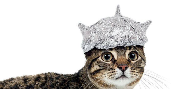 Увы, но даже шапочка из фольги не поможет. |Фото: mirtesen.ru.