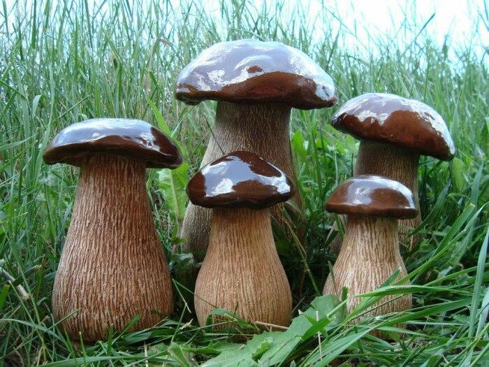 Сажать грибы под плодовыми деревьями - запрещено. /Фото: decor-foto.ru.