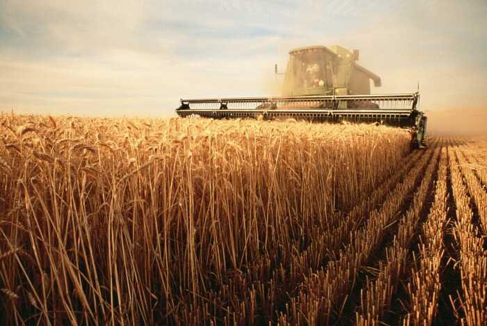 В 1962 году объемы зерна упали, и чтобы населению было что есть, приходилось его импортировать / Фото: ua-retail.com