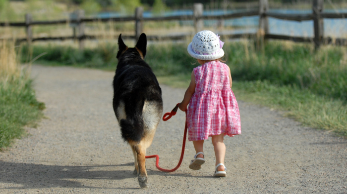 Если ребенку нет 14 лет, он не может выгуливать собаку без взрослых / Фото: pravda.vn.ua